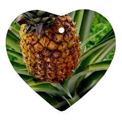 Pineapple 2 Heart Ornament (two Sides) by trendistuff