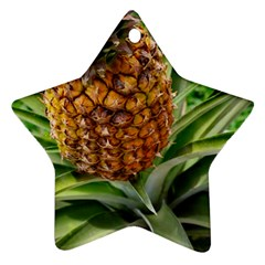 Pineapple 2 Star Ornament (two Sides) by trendistuff