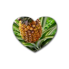 Pineapple 2 Rubber Coaster (heart)  by trendistuff