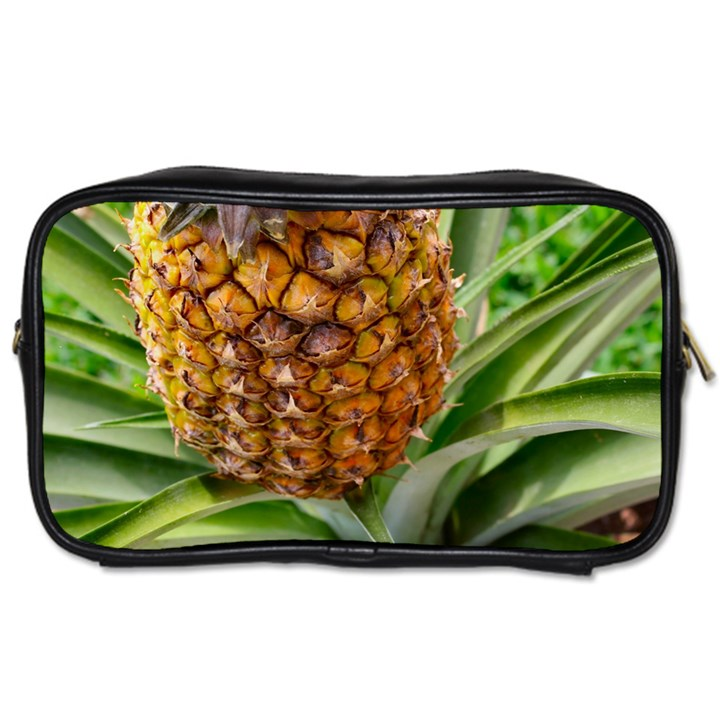 PINEAPPLE 2 Toiletries Bags 2-Side