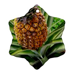 Pineapple 2 Ornament (snowflake) by trendistuff