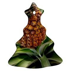 Pineapple 2 Ornament (christmas Tree)  by trendistuff