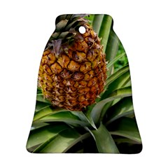 Pineapple 2 Ornament (bell) by trendistuff