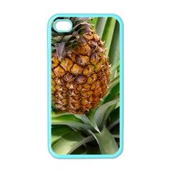 Pineapple 2 Apple Iphone 4 Case (color) by trendistuff