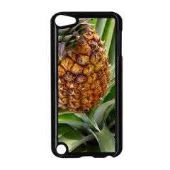 Pineapple 2 Apple Ipod Touch 5 Case (black) by trendistuff
