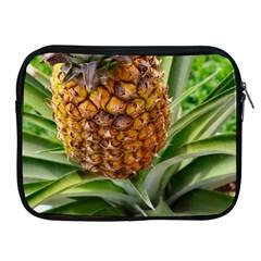Pineapple 2 Apple Ipad 2/3/4 Zipper Cases by trendistuff