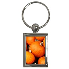 Pumpkins 1 Key Chains (rectangle)  by trendistuff