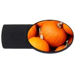 Pumpkins 1 Usb Flash Drive Oval (2 Gb) by trendistuff