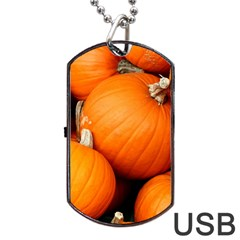 Pumpkins 1 Dog Tag Usb Flash (two Sides) by trendistuff