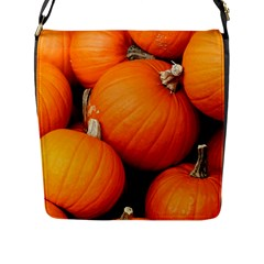 Pumpkins 1 Flap Messenger Bag (l)  by trendistuff