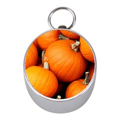 Pumpkins 1 Mini Silver Compasses by trendistuff
