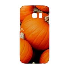 Pumpkins 1 Galaxy S6 Edge by trendistuff