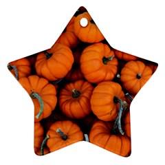 Pumpkins 2 Ornament (star) by trendistuff