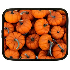 Pumpkins 2 Netbook Case (xl)  by trendistuff