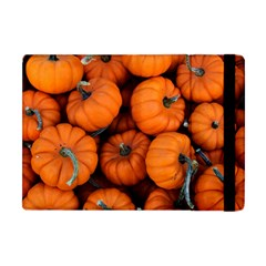Pumpkins 2 Apple Ipad Mini Flip Case by trendistuff