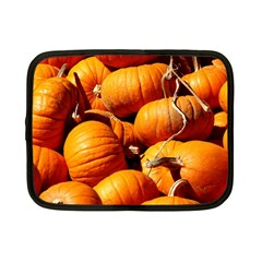 Pumpkins 3 Netbook Case (small)  by trendistuff