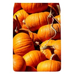 Pumpkins 3 Flap Covers (s)  by trendistuff