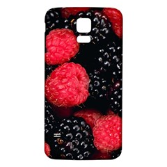 Raspberries 1 Samsung Galaxy S5 Back Case (white) by trendistuff