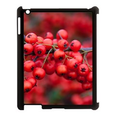 Red Berries 1 Apple Ipad 3/4 Case (black) by trendistuff