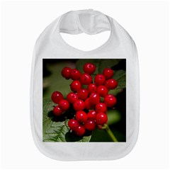 Red Berries 2 Amazon Fire Phone by trendistuff