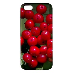 Red Berries 2 Apple Iphone 5 Premium Hardshell Case by trendistuff