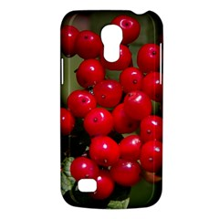 Red Berries 2 Galaxy S4 Mini by trendistuff