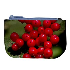 Red Berries 2 Large Coin Purse by trendistuff