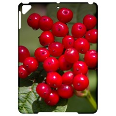 Red Berries 2 Apple Ipad Pro 9 7   Hardshell Case by trendistuff