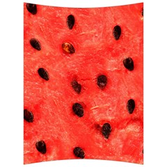 Watermelon 3 Back Support Cushion