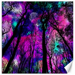 Magic Forest Canvas 16  X 16   by augustinet