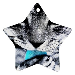 Purple Eyes Cat Ornament (star) by augustinet