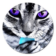 Purple Eyes Cat Magnet 5  (round) by augustinet