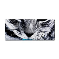Purple Eyes Cat Cosmetic Storage Cases by augustinet