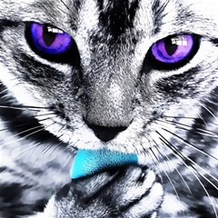 Purple Eyes Cat Magic Photo Cubes by augustinet
