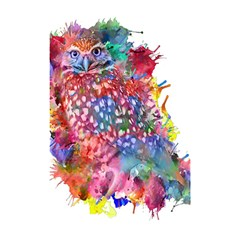 Rainbow Owl Shower Curtain 48  X 72  (small)  by augustinet