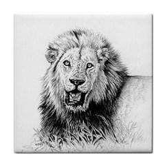 Lion Wildlife Art And Illustration Pencil Tile Coasters