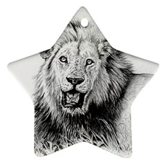 Lion Wildlife Art And Illustration Pencil Ornament (star)