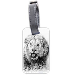Lion Wildlife Art And Illustration Pencil Luggage Tags (one Side)