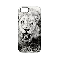 Lion Wildlife Art And Illustration Pencil Apple Iphone 5 Classic Hardshell Case (pc+silicone)