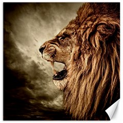 Roaring Lion Canvas 12  X 12
