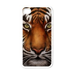 The Tiger Face Apple Iphone 4 Case (white)