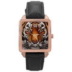 The Tiger Face Rose Gold Leather Watch