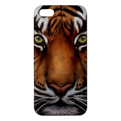 The Tiger Face Apple Iphone 5 Premium Hardshell Case