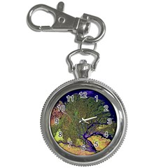 Lena River Delta A Photo Of A Colorful River Delta Taken From A Satellite Key Chain Watches