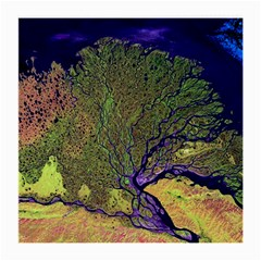 Lena River Delta A Photo Of A Colorful River Delta Taken From A Satellite Medium Glasses Cloth (2 Side)