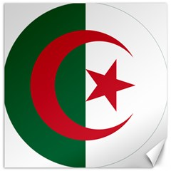Roundel Of Algeria Air Force Canvas 12  X 12   by abbeyz71