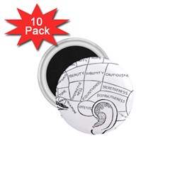 Brain Chart Diagram Face Fringe 1 75  Magnets (10 Pack)