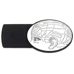 Brain Chart Diagram Face Fringe Usb Flash Drive Oval (2 Gb)