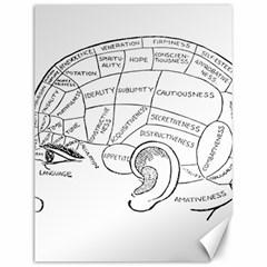Brain Chart Diagram Face Fringe Canvas 12  X 16