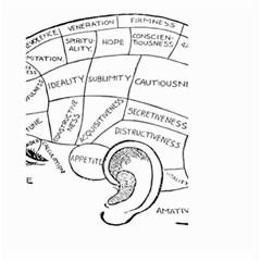 Brain Chart Diagram Face Fringe Small Garden Flag (two Sides)